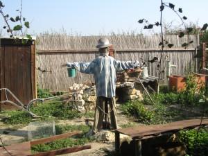 le jardin du papé 001